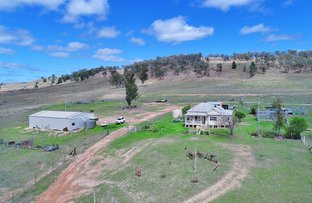 Picture of 5071 Ashford Road, Inverell NSW 2360