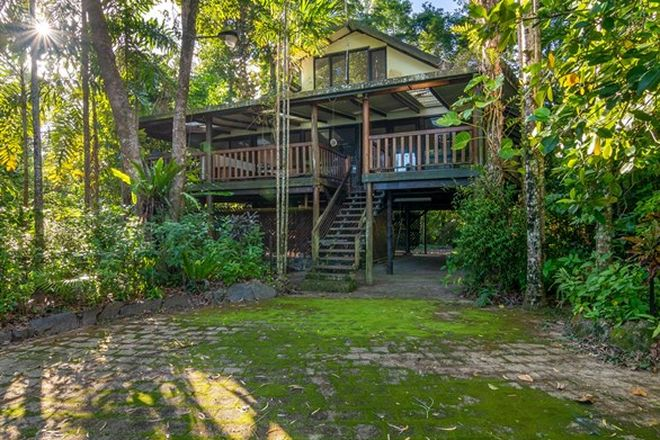 Picture of 436 Cape Tribulation Road, DAINTREE QLD 4873