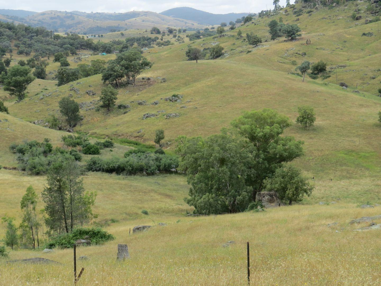 Lot 144 Tarrants Gap Road, Wyangala NSW 2808, Image 0