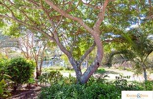 Picture of 44 Bibimulya Street, Bellara QLD 4507