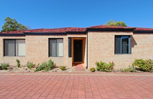 Picture of 13B  Tetworth Crescent, Nollamara WA 6061