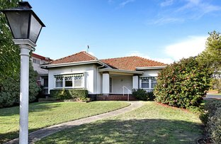 Picture of 16 O'Loughlan Street, Ormond VIC 3204