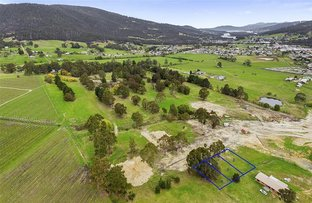 Picture of 2,3,4 - 186 Main Street, Huonville TAS 7109
