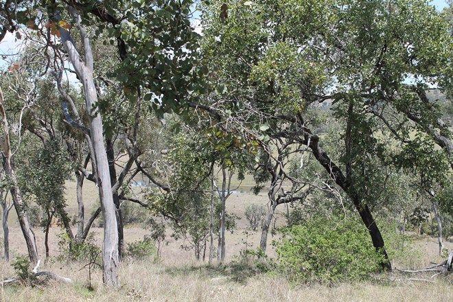 Picture of Lot 58 Nukku North Road, NUKKU QLD 4306