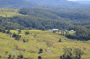 Picture of Bald Knob QLD 4552