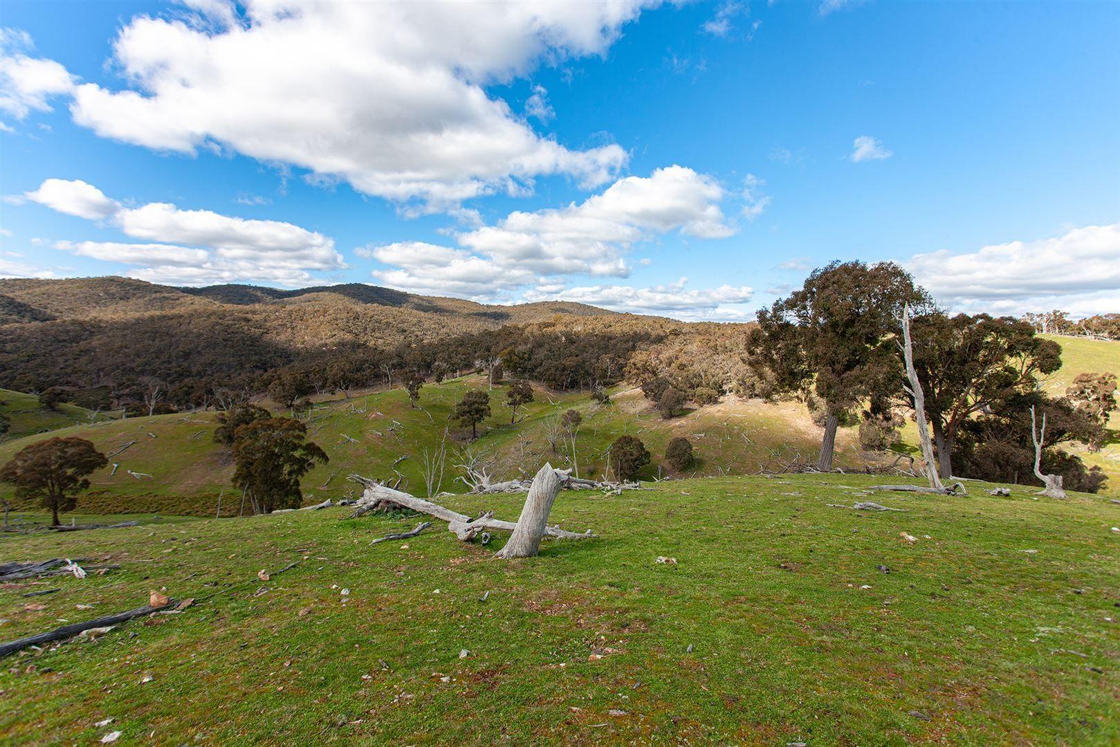 Taralga NSW 2580, Image 2