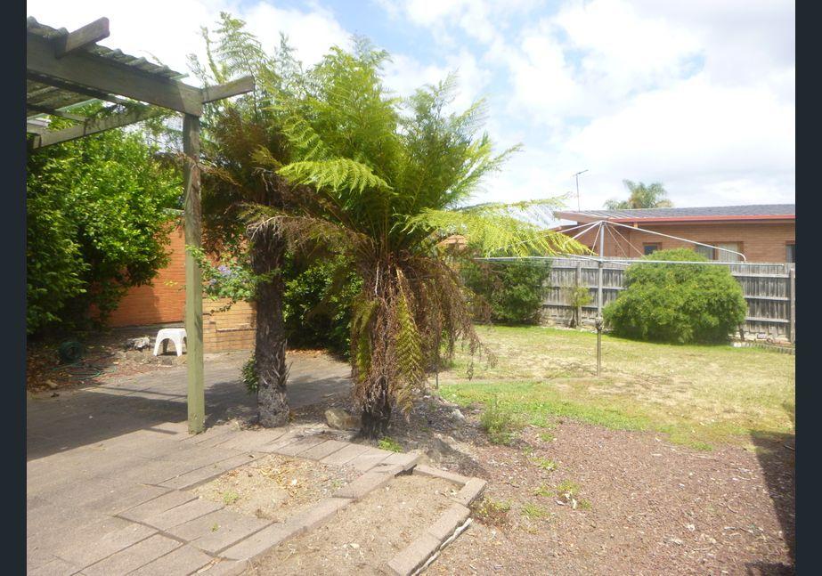 11 Pamela  Street, Mount Waverley VIC 3149, Image 2