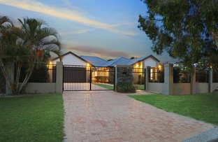 Picture of 7 Yarraville Street, Robina QLD 4226