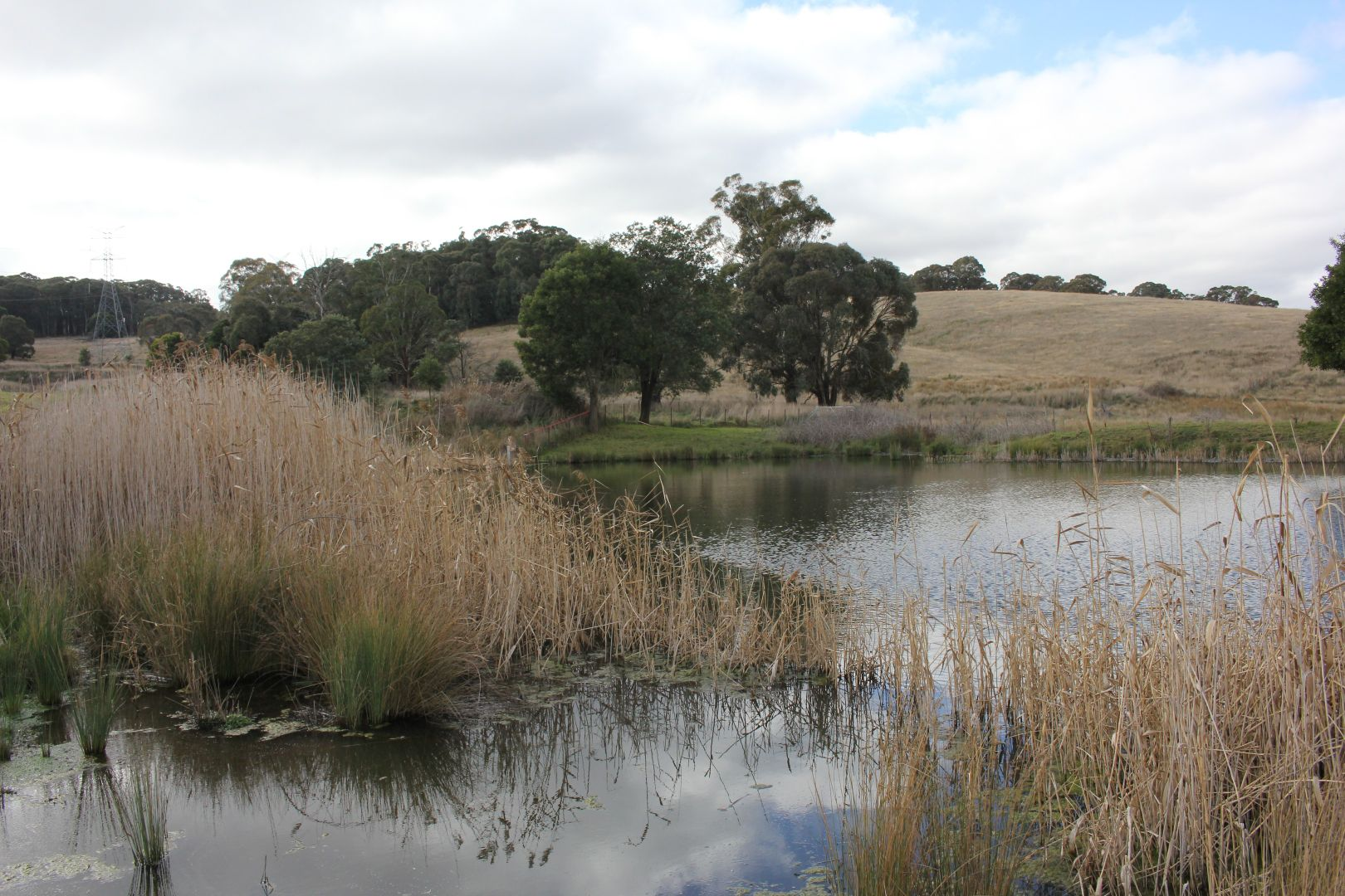 Lot 64 Sunny Corner Road, Meadow Flat NSW 2795, Image 1