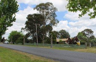 Picture of 208-212 Logan Street, Tenterfield NSW 2372