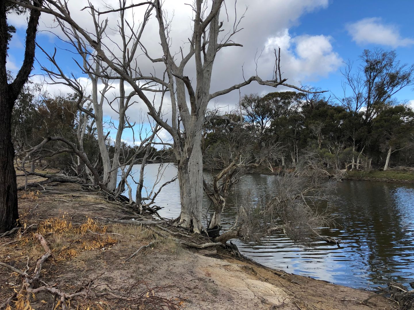 Lot 3206 ALBANY HIGHWAY, Kojonup WA 6395, Image 0