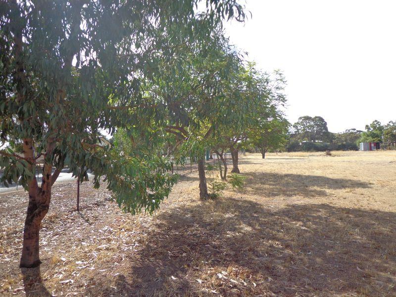 63 Omdurman, Wagin WA 6315, Image 1