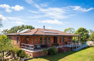 Picture of 1181 SNOWY MOUNTAINS HIGHWAY, Numbugga NSW 2550