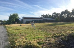 Picture of Lot 61 Needlebush Drive, Chiton SA 5211