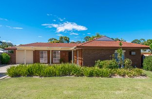 Picture of 5 Leicester Square, Alexander Heights WA 6064
