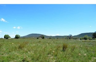 Picture of 8299 Oxley Highway, Gunnedah NSW 2380