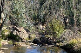 Picture of Elliot Way, Tumbarumba NSW 2653