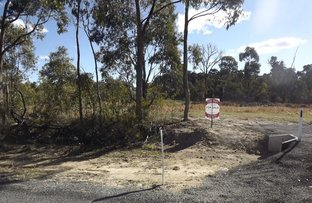 Picture of Lot 37 Torrington Road, Torrington NSW 2371