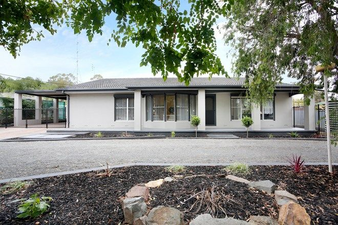 Picture of 97 Penrice Road, PENRICE SA 5353