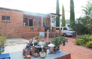 Picture of 24 Chelmsford Ave, Belmore NSW 2192