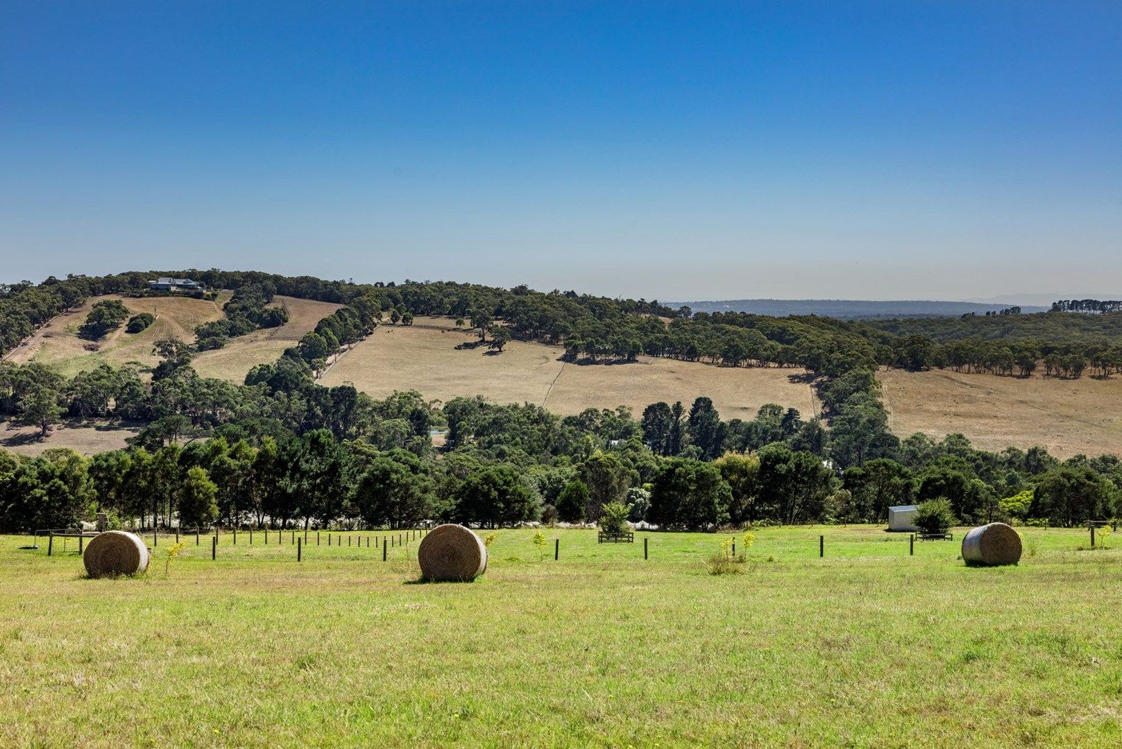 116 Donaldsons Road, Red Hill VIC 3937, Image 0