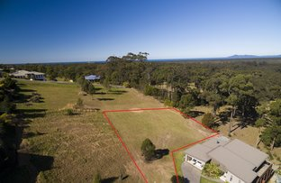 Lot/623 The Bridle Path, Tallwoods Village NSW 2430
