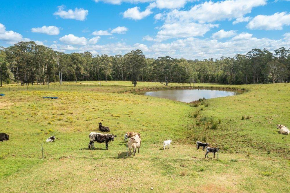 655 Lake Innes Drive, Lake Innes NSW 2446, Image 2