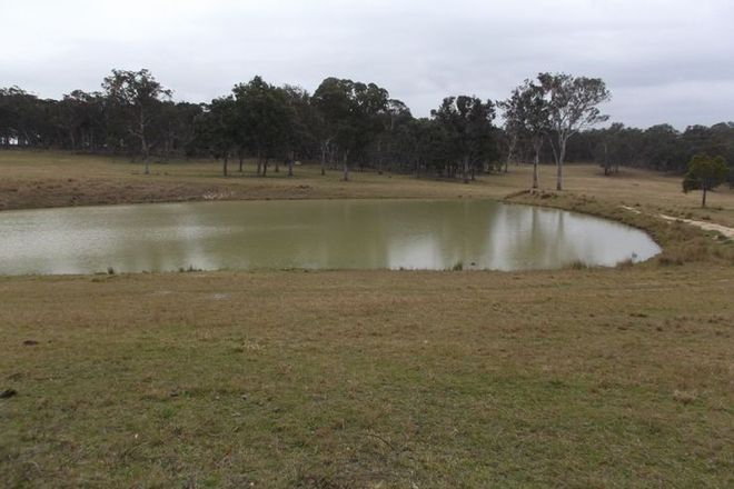 Picture of Part of 5887 Mount Lindesay Road, STANTHORPE QLD 4380