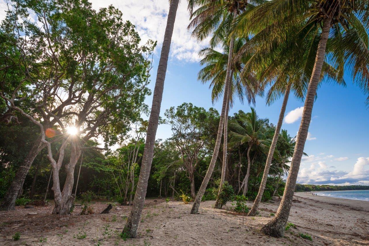 1/2-12 Reef Street (The Beachfront), Port Douglas QLD 4877, Image 0