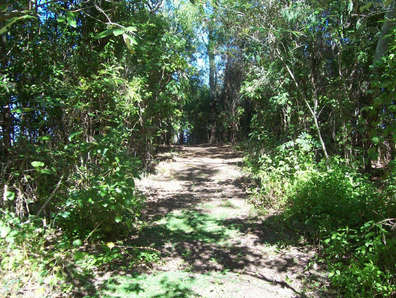 Lot 2 Miran Khan Drive, Freshwater Point QLD 4737, Image 1