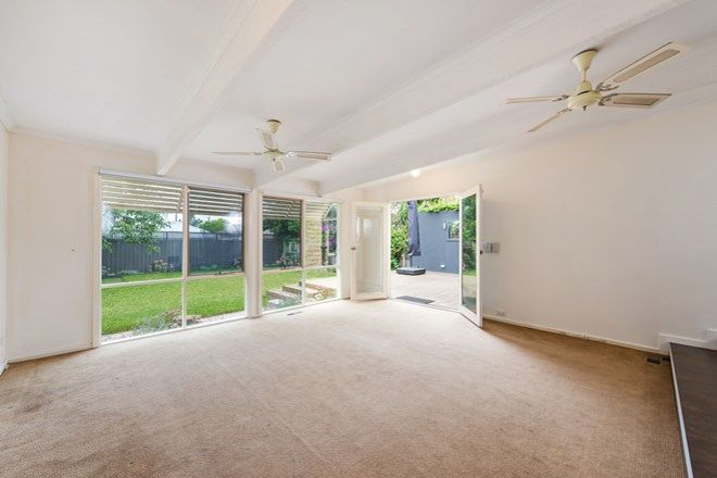 Picture of 33 Grout Street, HAMPTON VIC 3188