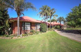 Picture of 55 Mcwilliam Dr, Douglas Park NSW 2569