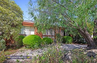 Picture of 7 Jasmine Street, Caulfield South VIC 3162
