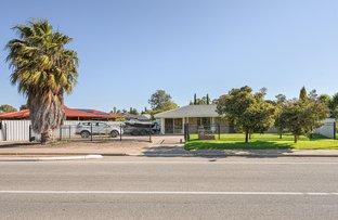 Picture of 49 Sherebrooke Boulevard, Woodcroft SA 5162