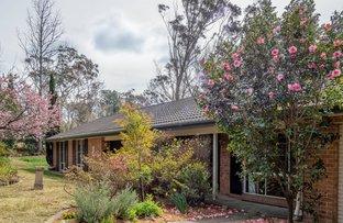 Picture of 9 Farnham Avenue, Wentworth Falls NSW 2782