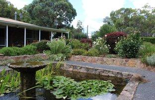 163 Geyers Road, Tenterfield NSW 2372