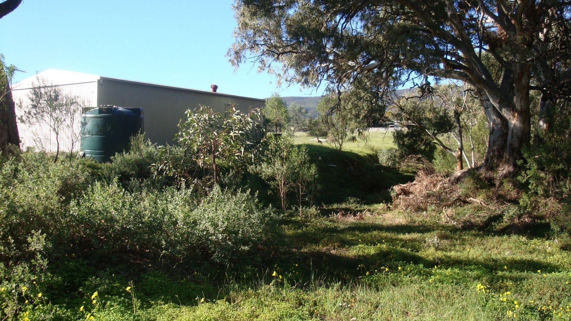 11 Muster Drive, Napperby SA 5540, Image 2