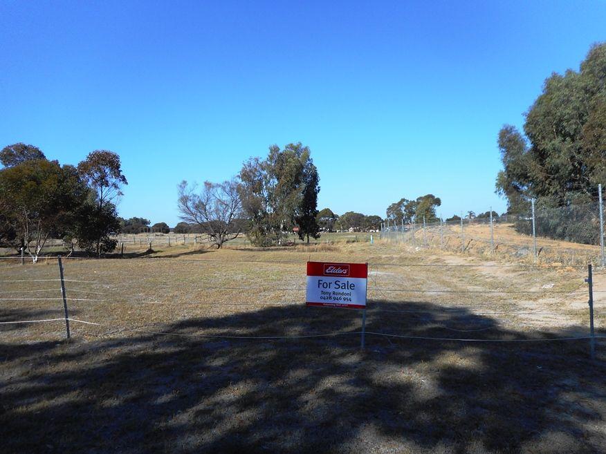 Lot 8 Round Drive, Katanning WA 6317, Image 0
