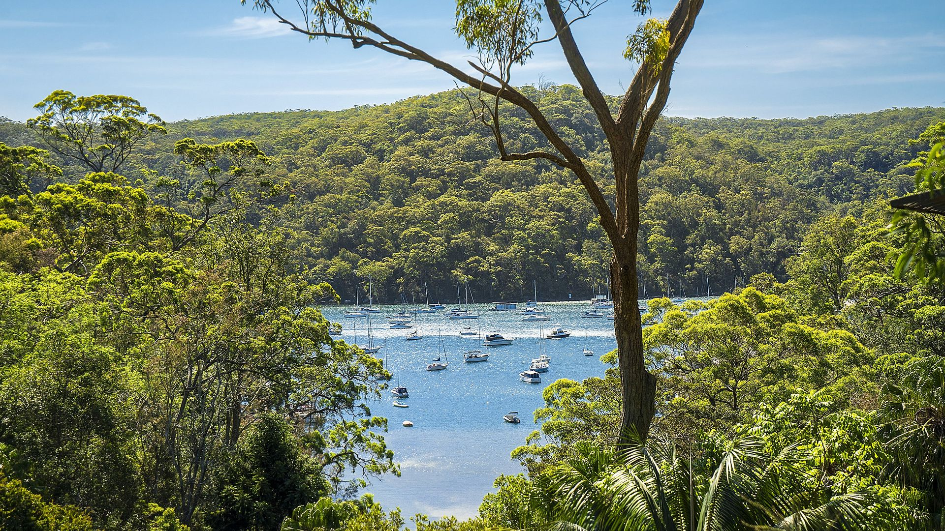 1/92 McCarrs Creek Road, Church Point NSW 2105, Image 2