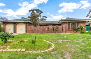 Picture of 19 Vincent Boulevard, Flagstaff Hill SA 5159
