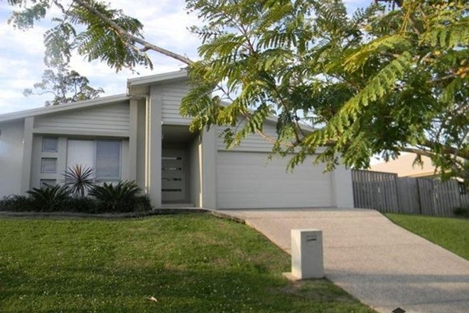 Picture of 14 Daintree Drive, COOMERA QLD 4209