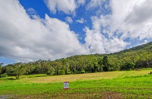 Picture of Lot 113 Clearwater Court, Wongawallan QLD 4210