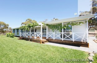 Picture of 109 Spring Gully Road, Clare SA 5453