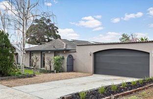 Picture of 66 Knights Drive, Glen Waverley VIC 3150
