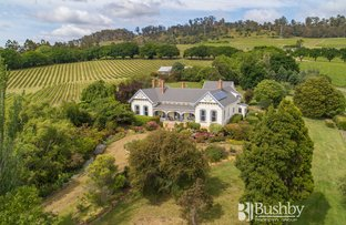 Picture of 93 Rosevears Drive, Rosevears TAS 7277
