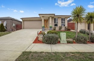 Picture of 31 John Crawford Crescent, Casey ACT 2913
