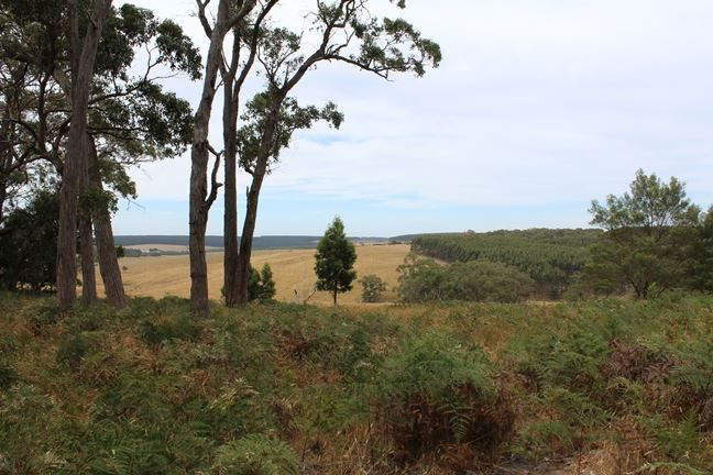 Lot 2C Strathdownie-Digby Road, Digby VIC 3309, Image 1