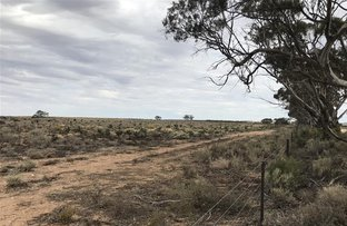Picture of Section 232 Quarry Road, Black Hill SA 5353