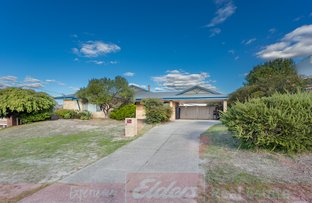 Picture of 21 Wellington Blvd, Collie WA 6225