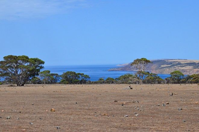Picture of Lot 40 NORTH COAST ROAD, MENZIES SA 5223